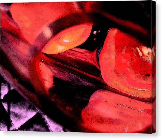 Red Tomatoe Two Canvas Print