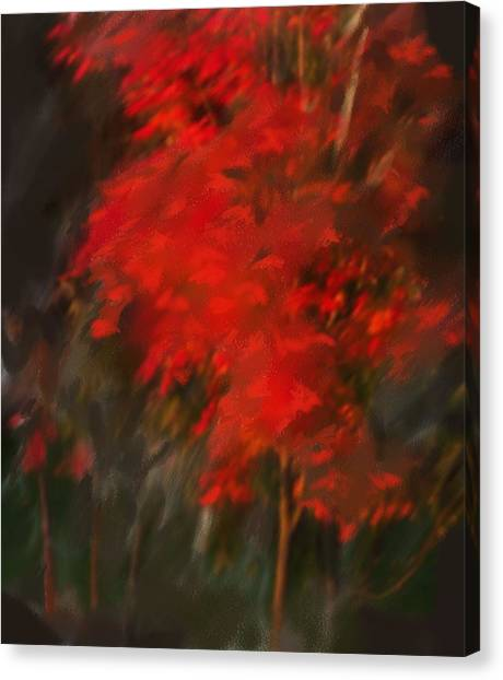 Red Tree Canvas Print by Claire Whitehead