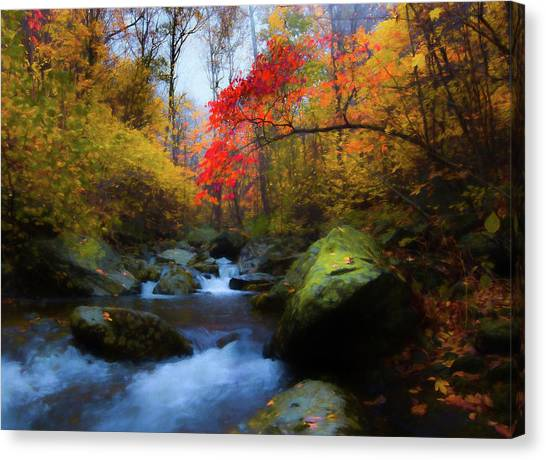 Red Tree In White Oak Canyon Canvas Print