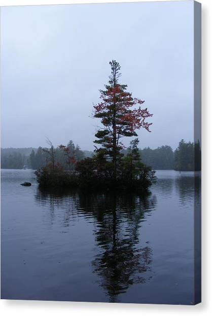 Red Tree Island Canvas Print by Alison Heckard