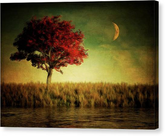 Red Tree With Moonrise Canvas Print