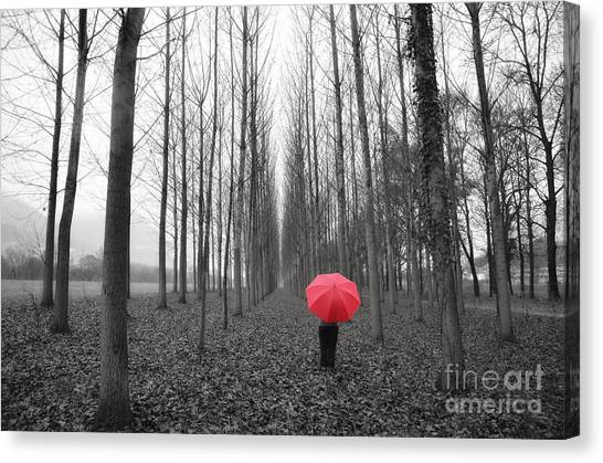 Red Umbrella In An Allee Canvas Print