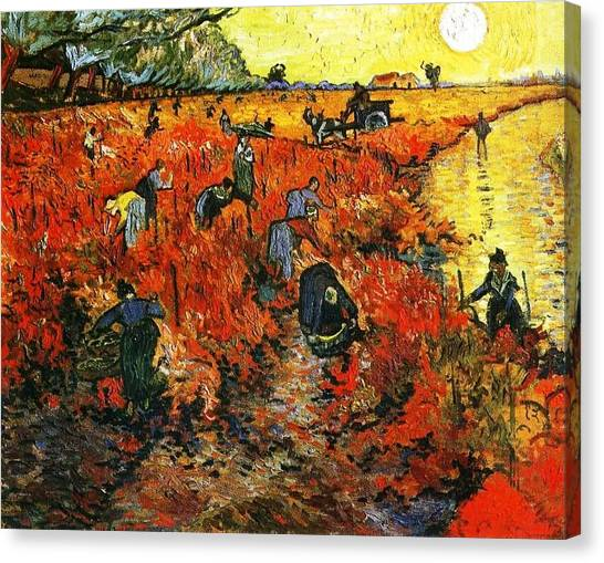 Red Vineyard Canvas Print