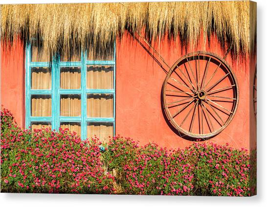 Cotopaxi Canvas Print - Red Wall And Flowers by Jess Kraft