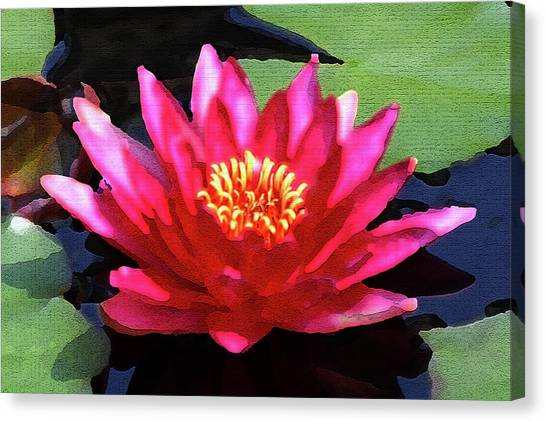 Red Water Lily - Palette Knife Canvas Print