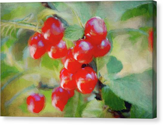 Wild Berries Canvas Print - Red Wild Berries On The Branch by Maria Angelica Maira