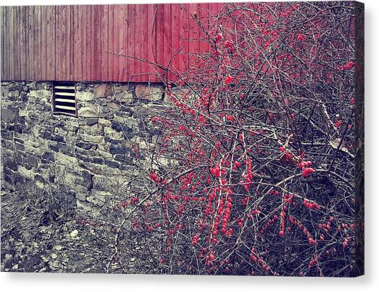 Red Winter Canvas Print by JAMART Photography