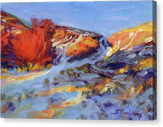 Snow Melt Canvas Print - Redbush by Steve Henderson