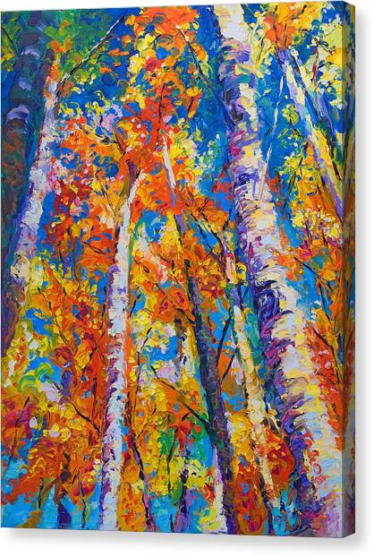 Expressionism Canvas Print - Redemption - Fall Birch And Aspen by Talya Johnson