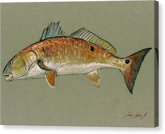 Fish Canvas Print - Redfish Watercolor Painting by Juan  Bosco