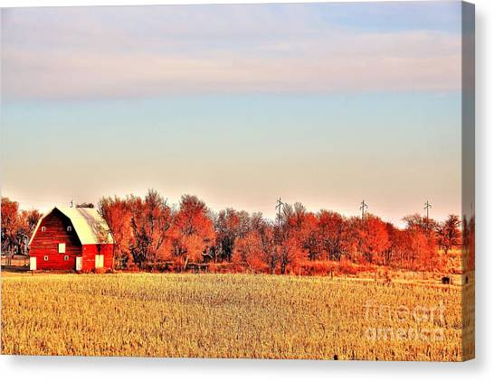 Reds And Oranges Canvas Print