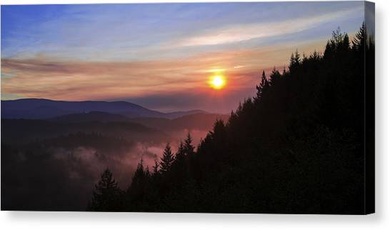 Sun Rays Canvas Print - Redwood Sun by Chad Dutson