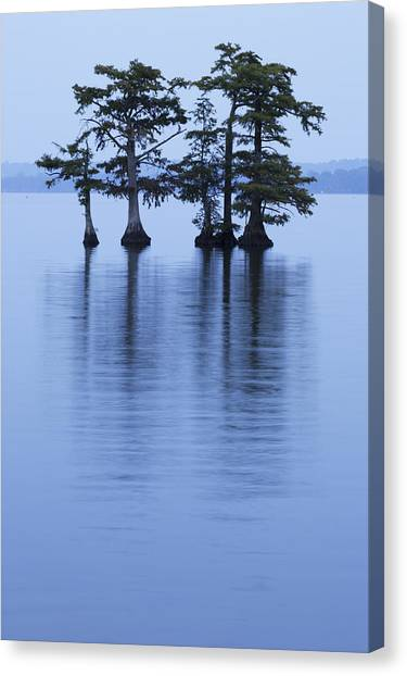 Reelfoot Reflections Canvas Print by Eric Foltz