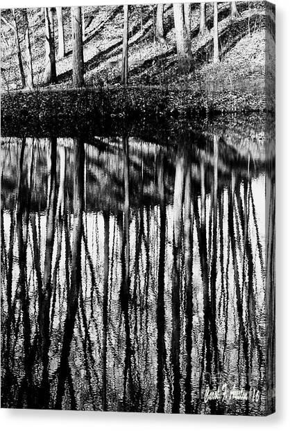 Reflected Landscape Patterns Canvas Print