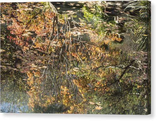 Reflecting Gold Canvas Print