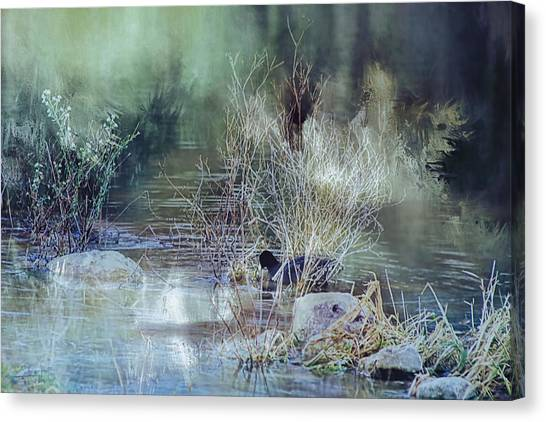 Reflecting On A Misty Morning Canvas Print