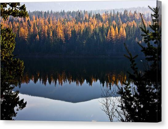 Reflecting On Autumn Canvas Print