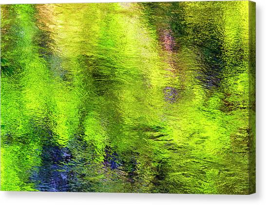 Canvas Print featuring the photograph Reflecting Waters by Dee Browning