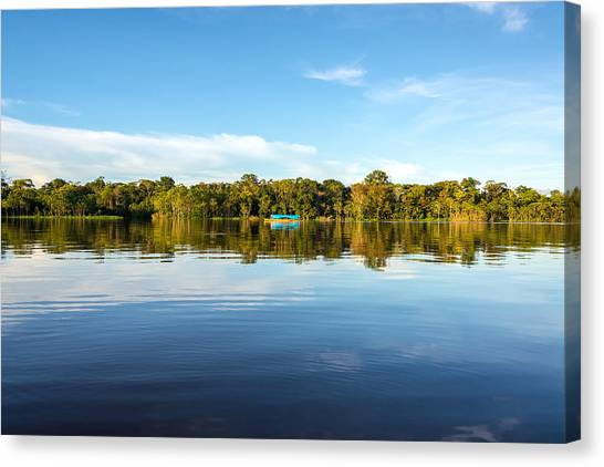 Amazon Rainforest Canvas Print - Reflection In The Amazon by Jess Kraft