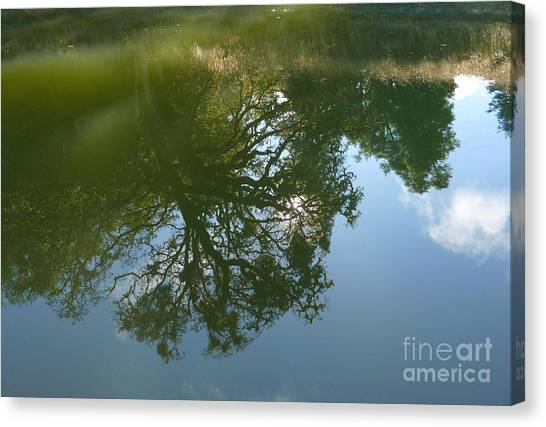 Reflection Canvas Print by JoAnn SkyWatcher