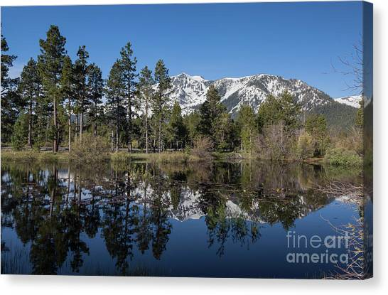 Reflection Of Mount Tallac Canvas Print by Webb Canepa