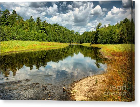 Reflection Of Nature Canvas Print
