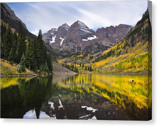 Reflections And Aspen Trees Canvas Print