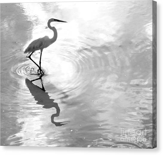 Reflections And Ripples Canvas Print