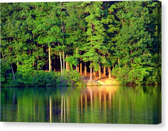 Reflections At Farrington Lake 6 Canvas Print