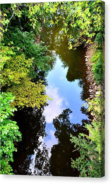 Canvas Print featuring the photograph Paradigm Shift by EDi by Darlene