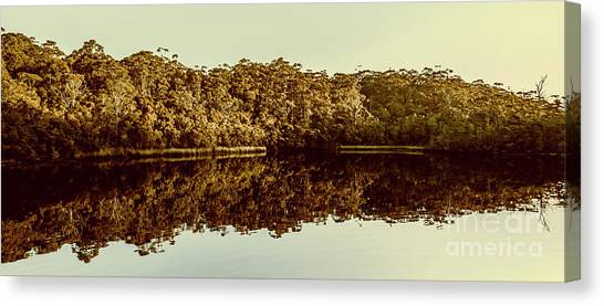 Mangrove Trees Canvas Print - Reflections From Cockle Creek  by Jorgo Photography - Wall Art Gallery