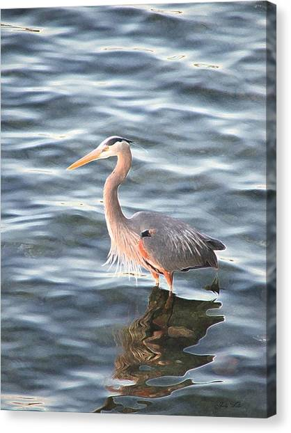 Reflections In The Water Canvas Print by Judy  Waller