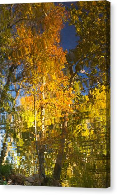 Reflections Of Fall - Grasshopper Point Canvas Print