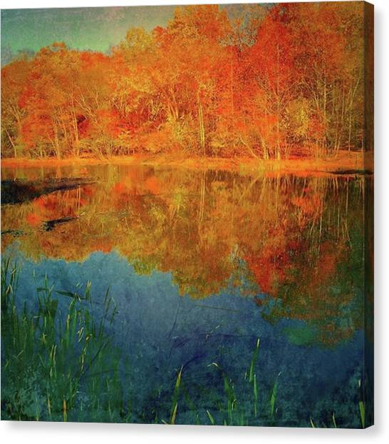 Orchids Canvas Print - Reflections Of Fall by Thirsty Orchid