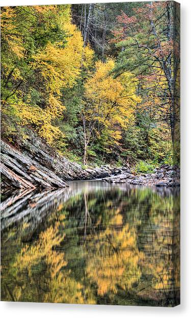 Reflections Of Natural Color Canvas Print by JC Findley