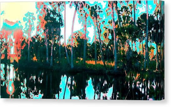 Reflections Of Palms Gulf Coast Florida Canvas Print