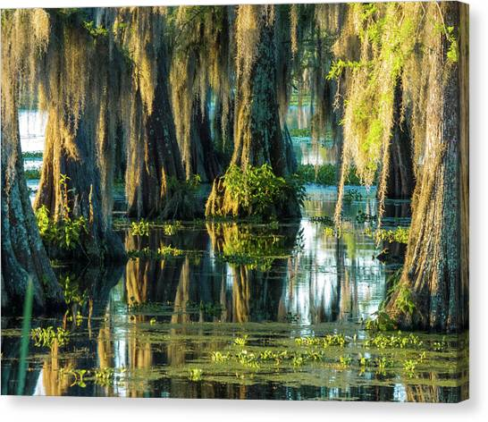 Reflections Of The Times Canvas Print