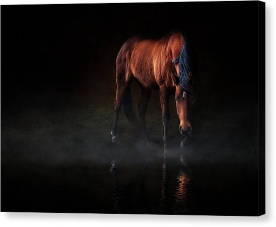 Reflections Of Wilma Canvas Print