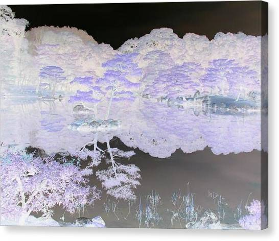 Reflections On A Surreal Pond Canvas Print by Curtis Schauer