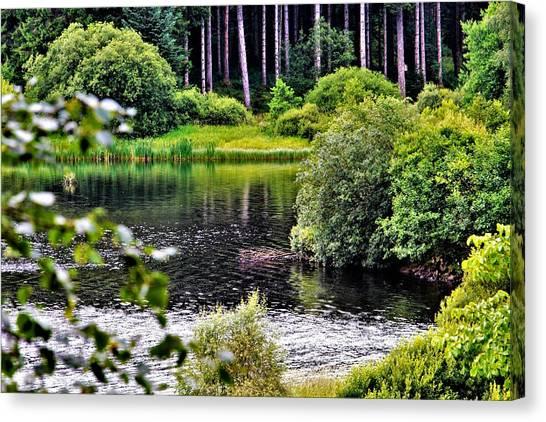 Reflections On Kielder Water Canvas Print