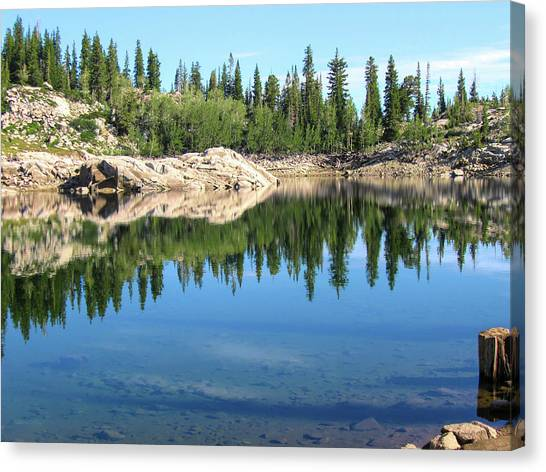 Reflections On Lake Mary Canvas Print