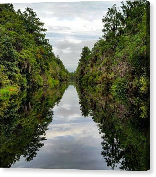 Okefenokee Canvas Print - Reflections On The Okefenokee by Karen Breeze