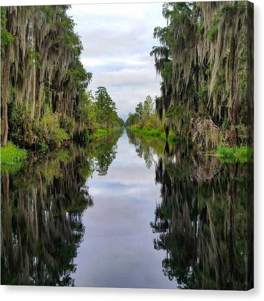 Okefenokee Canvas Print - Reflections On The Okefenokee Swamp by Karen Breeze