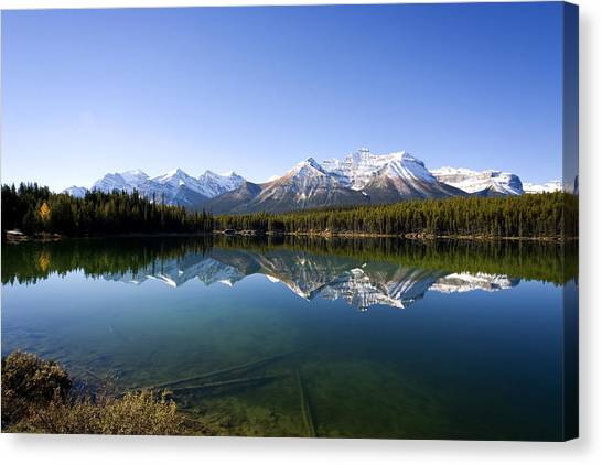 Reflections Canvas Print by Richard Steinberger