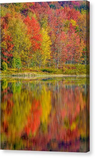 Canaan Valley West Virginia Reflections Canvas Print