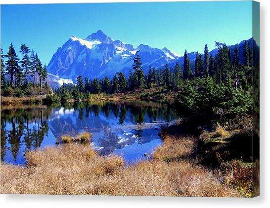 Reflective Beauty Canvas Print