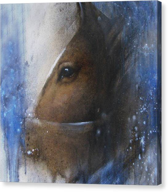 Reflective Horse Canvas Print