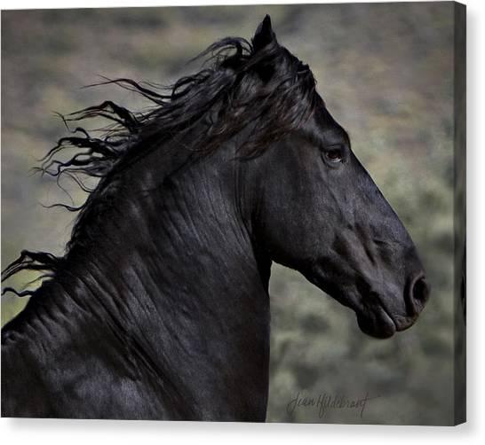 Black Stallion Canvas Print - Regal by Jean Hildebrant