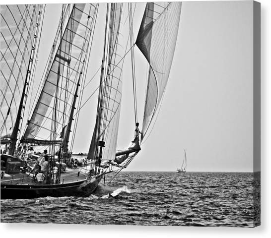 Regatta Heroes In A Calm Mediterranean Sea In Black And White Canvas Print