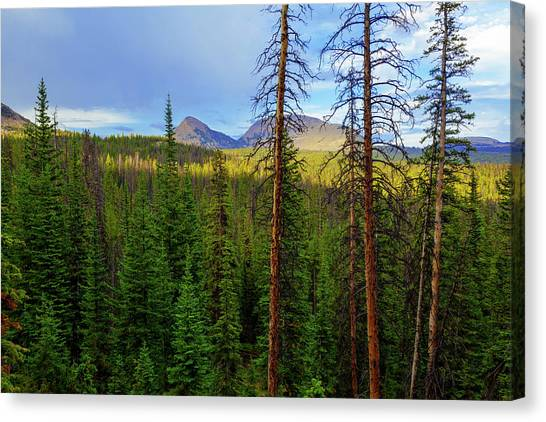 Uinta Canvas Print - Reids Peak by Chad Dutson